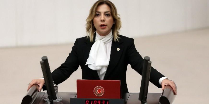 Ak Parti Milletvekili Gökcan su sorununu meclise taşıdı