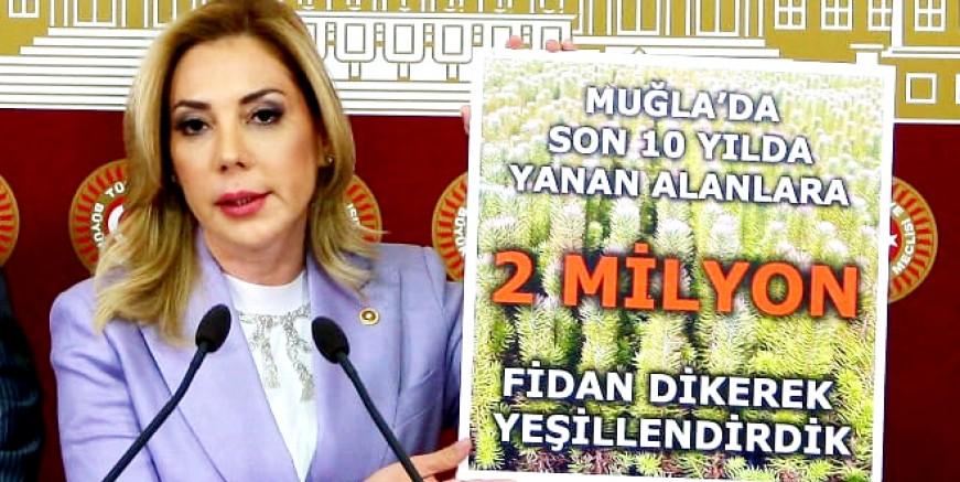"""AK Parti Milletvekili Gökcan, TBMM'de  """"Akıllı Yangın"""" söylemlerine cevap verdi."""