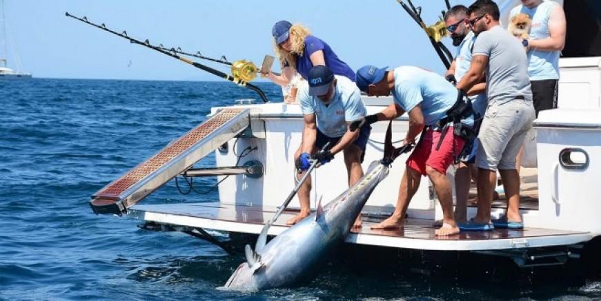Akdeniz Açık Deniz Sportif Balık Avı Turnuvası Most Bodrum 1 Ekimde Başlıyor