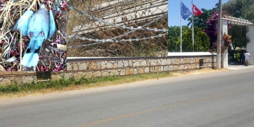 Belediye Meclisi Jiletli bahçe telini yasaklandı