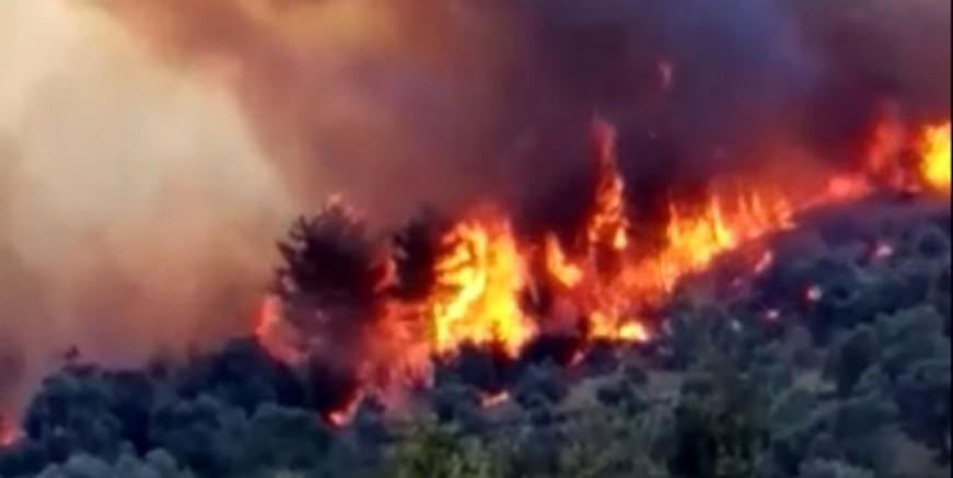 Bodrum yangını kontrol altında, Milas yangını devam ediyor