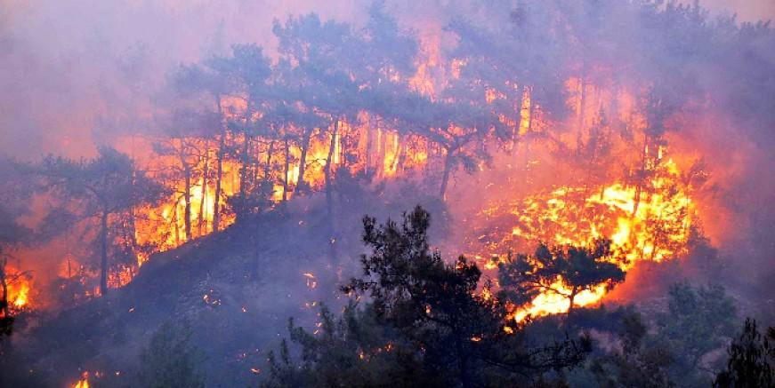 CHP, Marmaris'teki orman yangınları için suç duyurusunda bulundu