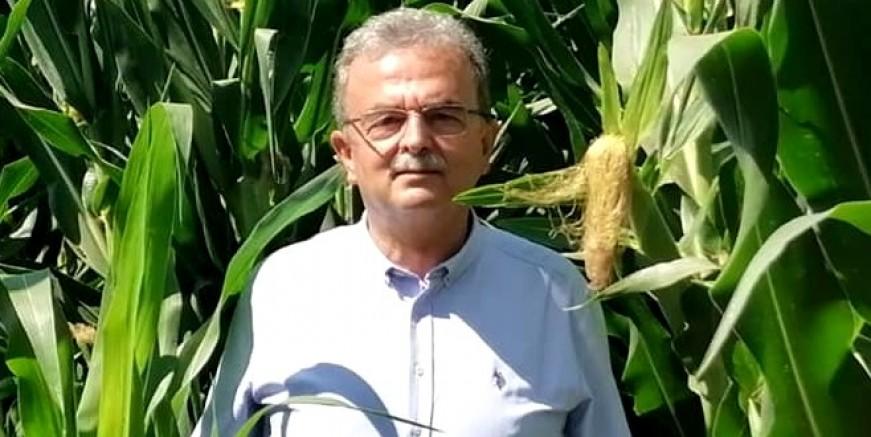 """CHP Milletvekili Girgin: """"Çiftçimiz adeta sıra dayağından geçiriliyor."""""""