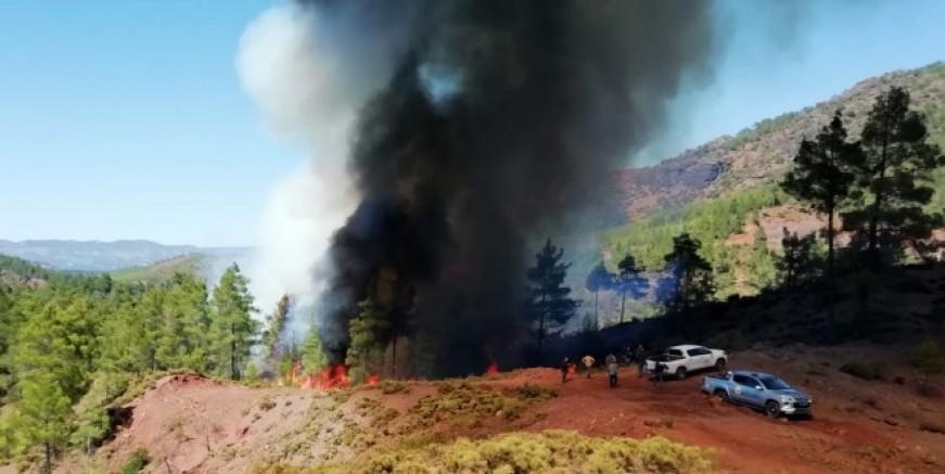 Denizli'de başlayan yangın Muğla'ya sıçradı