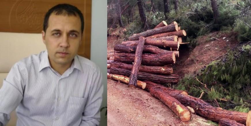 Fethiye orman işletme müdürü zimmetten tutuklandı