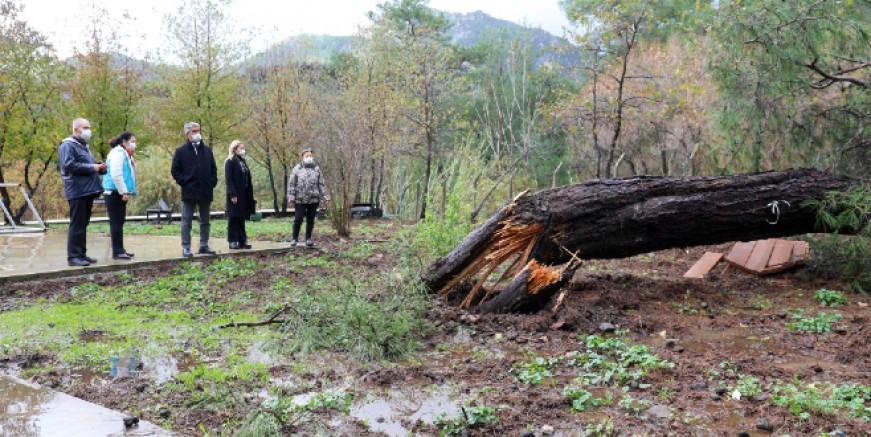 Fırtına ve yağış Marmaris'i de vurdu! 170 ağaç devrildi