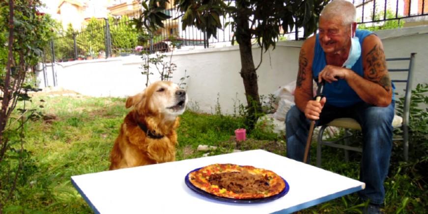 Gazeteci köpek Golden Bülten'in 11. yaş günü kutlandı