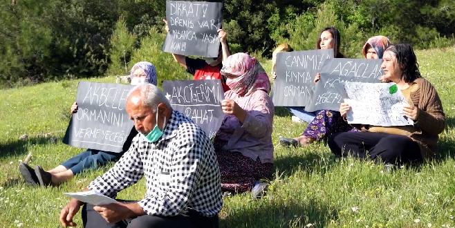 İkizköylüler Akbelen ormanları mücadelesini bırakmıyor, dava açtılar