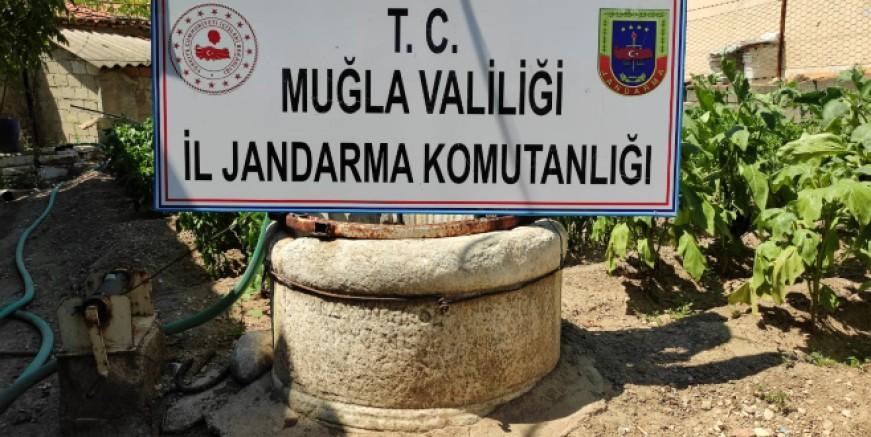 Jandarma'dan tarihi eser operasyonu