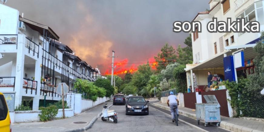 Marmaris Armutalan ormanları alev alev yanıyor, evler tehlike altında