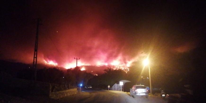 Milas'taki orman yangını Bodrum'a ulaştı