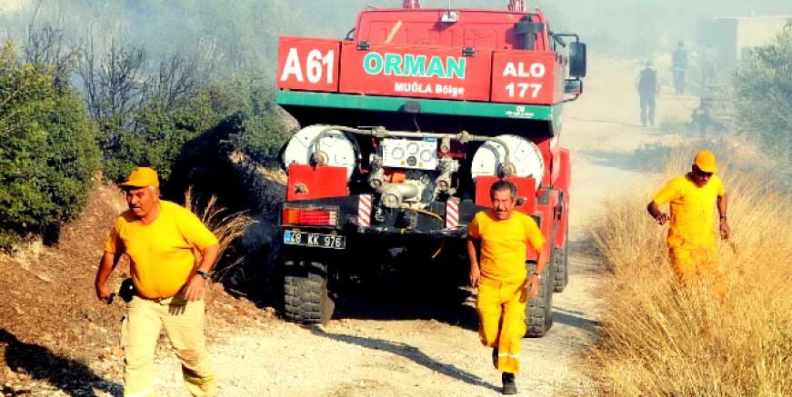 Ormanlık alanlarda ateş yakılmaması genelgesi , ağır cezalar geliyor