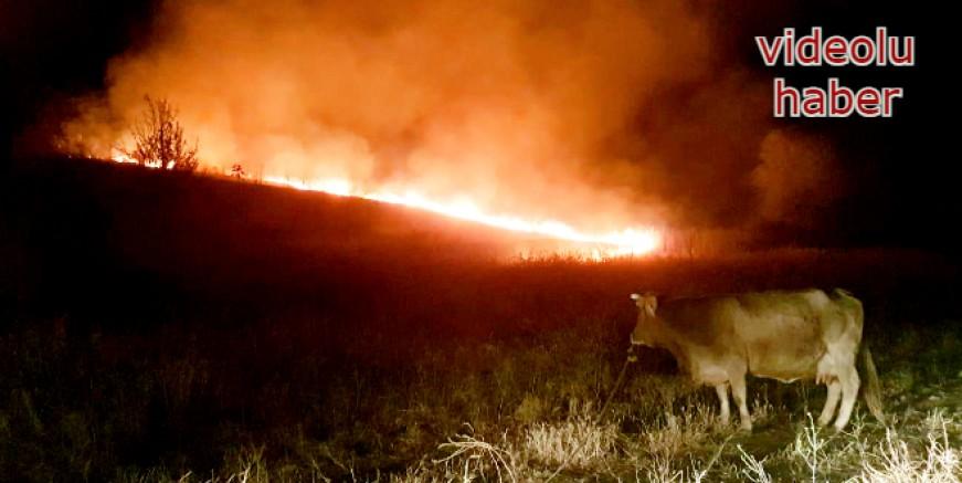 Peksimet köyünde yangın, hayvanlar telef oluyordu