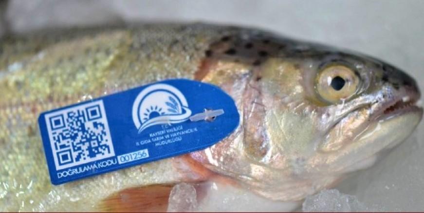 QR kod ile tabağınızdaki balığı ağdan çatala izlemek mümkün!