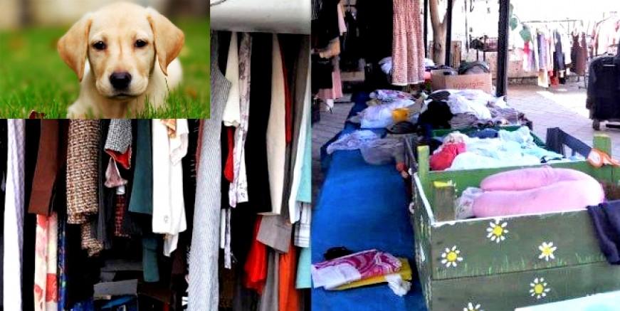 Sokak hayvanları için satılan 2. el giyecekler çalındı
