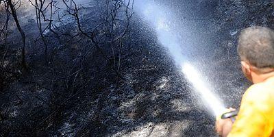 Kızılağaç 'ta yol kenarına atılan sigara izmariti yangın çıkardı