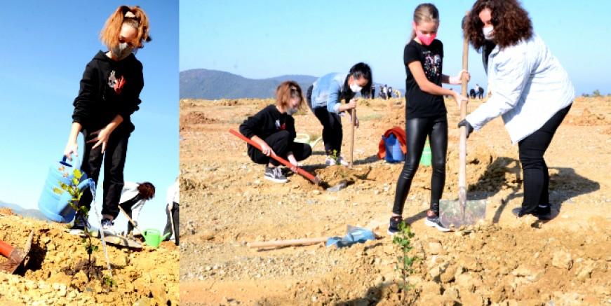 Torba 'da öğrenciler yüzlerce  fidanı toprakla buluşturdu