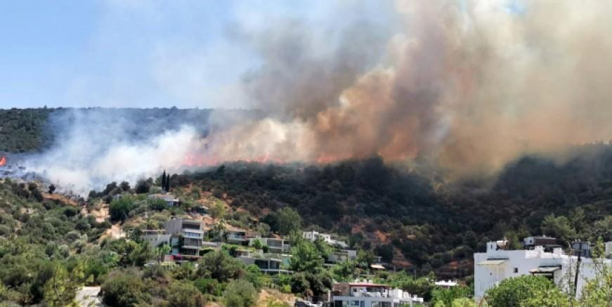 Umurça'da yangın paniği, evlere 100 mt kaldı